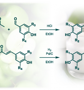 Synthesis of Biobased Phloretin Analogues: An Access to Antioxidant and Anti-Tyrosinase Compounds for Cosmetic Applications