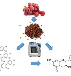 Optimization of Catechin and Proanthocyanidin Recovery from Grape Seeds Using Microwave-Assisted Extraction